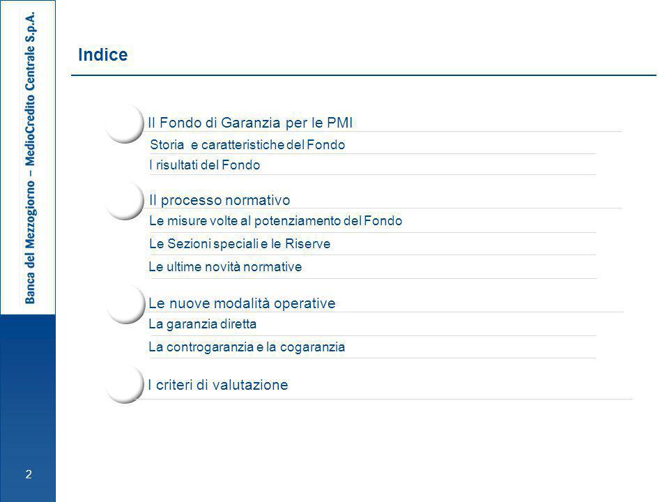 Il Fondo di Garanzia per le PMI 3 Storia e caratteristiche del Fondo