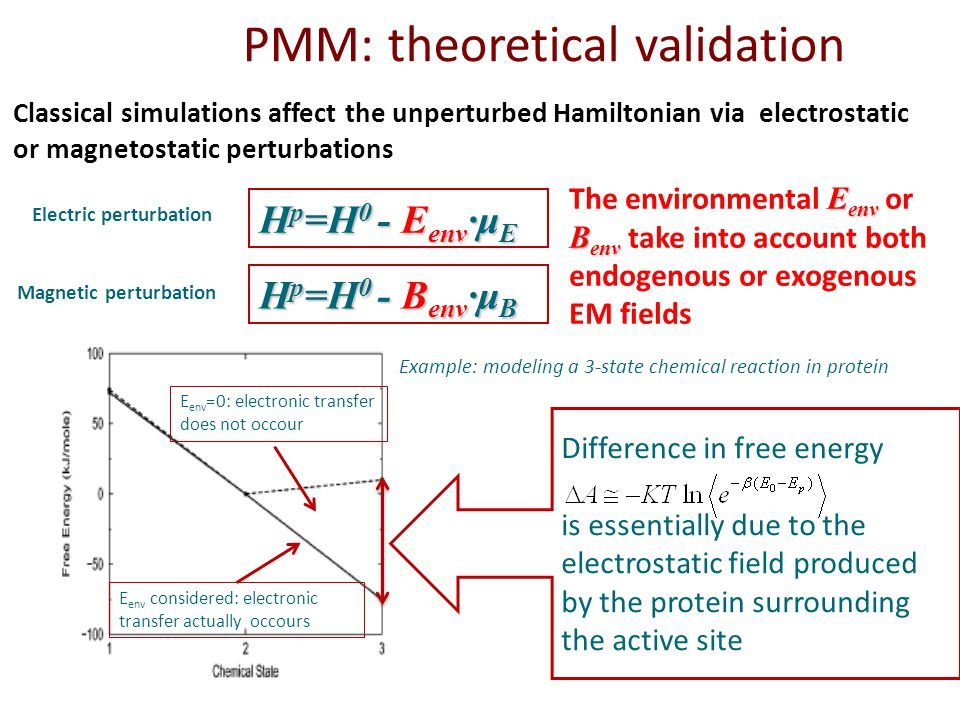 Classical simulations affect the unperturbed Hamiltonian via electrostatic or magnetostatic perturbations H p =H 0 - E env ·μ E PMM: theoretical validation Difference in free energy is essentially due to the electrostatic field produced by the protein surrounding the active site Example: modeling a 3-state chemical reaction in protein E env =0: electronic transfer does not occour E env considered: electronic transfer actually occours H p =H 0 - B env ·μ B E env B env The environmental E env or B env take into account both endogenous or exogenous EM fields Electric perturbation Magnetic perturbation