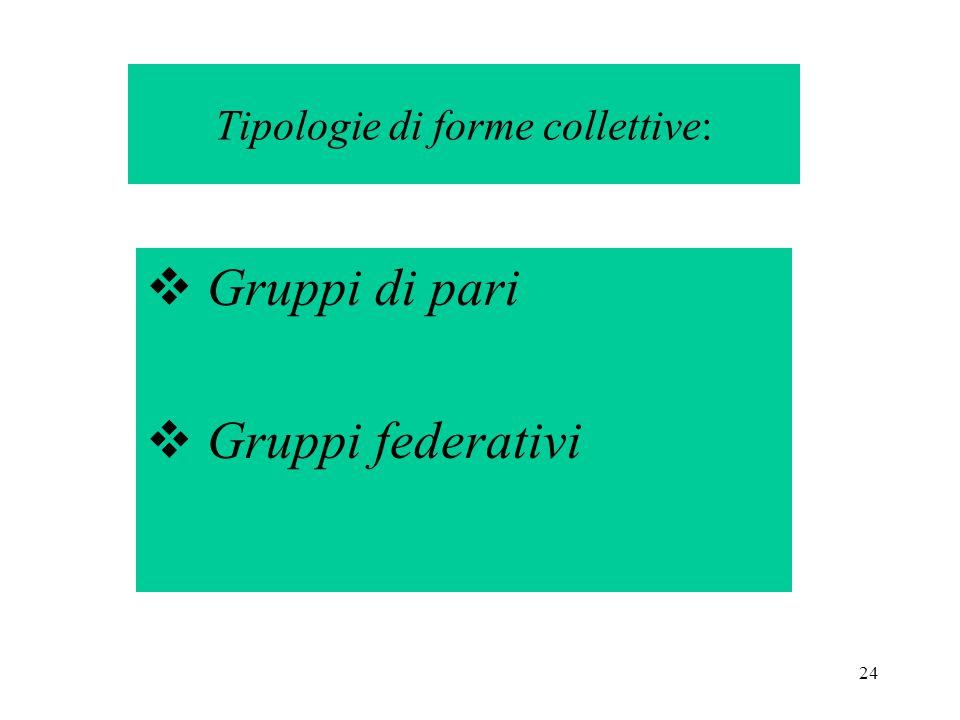 24 Tipologie di forme collettive:  Gruppi di pari  Gruppi federativi