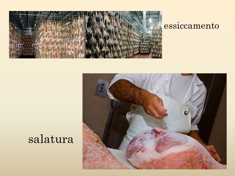 essiccamento salatura