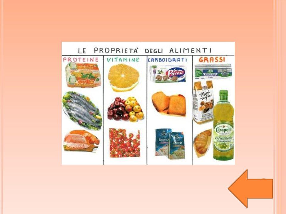 INTRODUZIONE La cosa più importante della vita è costituita dall'alimentazione.