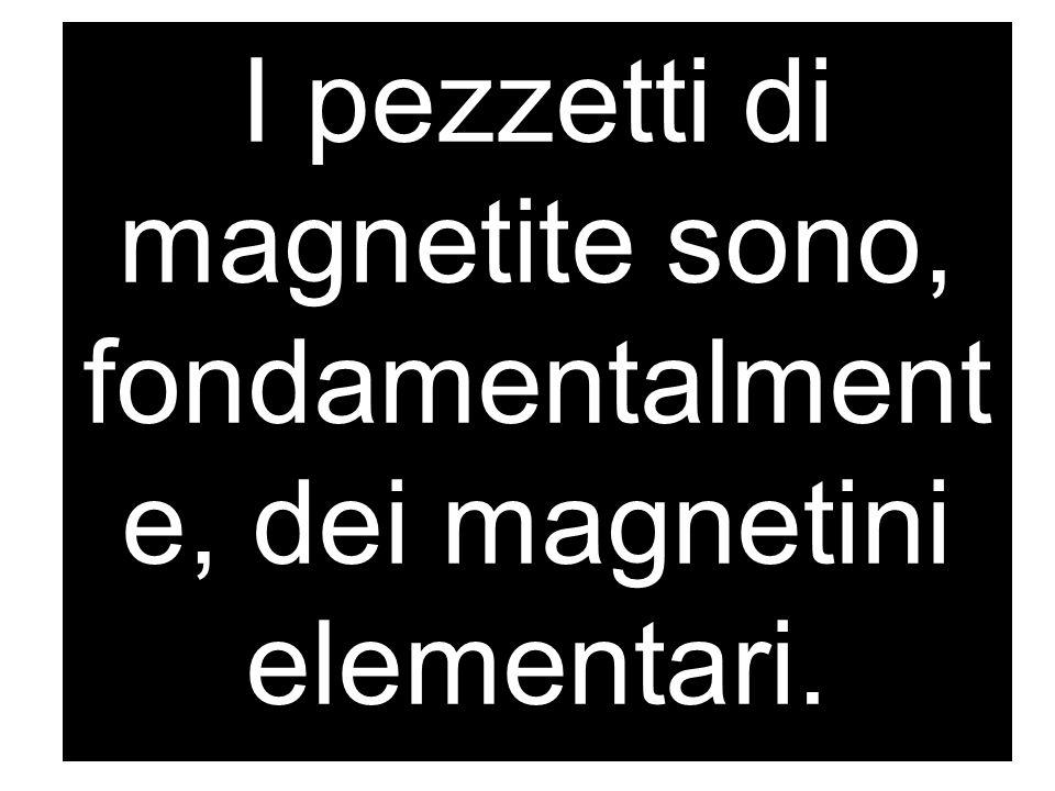 I pezzetti di magnetite sono, fondamentalment e, dei magnetini elementari.