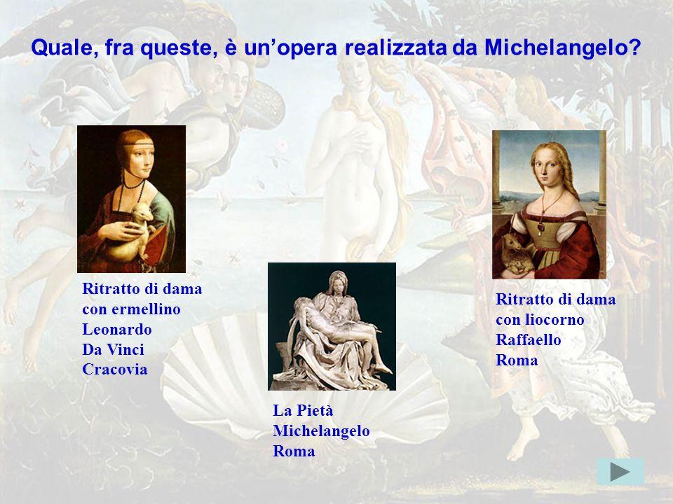 michelang4err Quale, fra queste, è un'opera realizzata da Michelangelo? Indice
