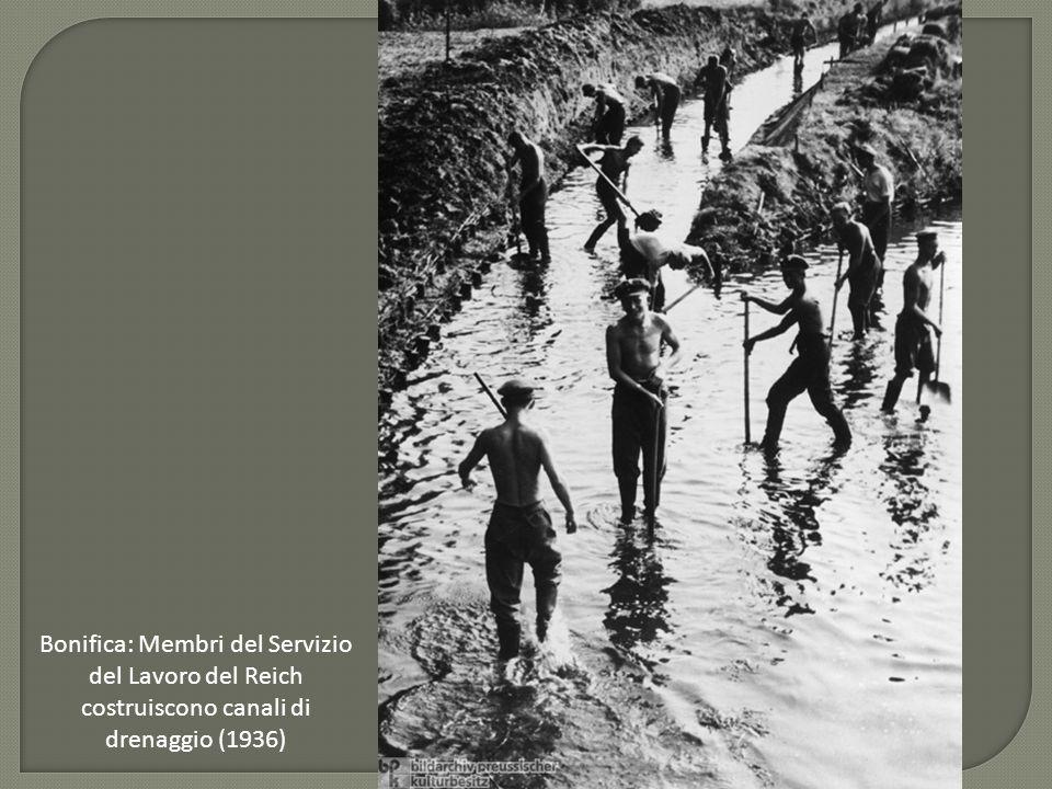 Bonifica: Membri del Servizio del Lavoro del Reich costruiscono canali di drenaggio (1936)