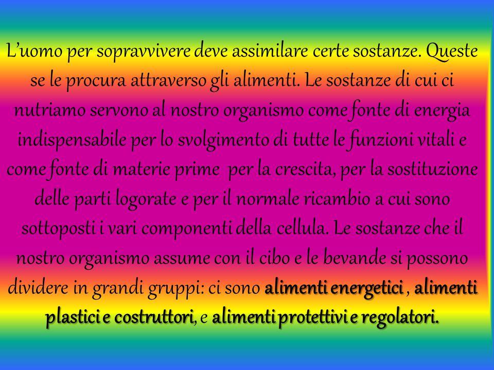 alimenti energetici alimenti plastici e costruttorialimenti protettivi e regolatori. L'uomo per sopravvivere deve assimilare certe sostanze. Queste se