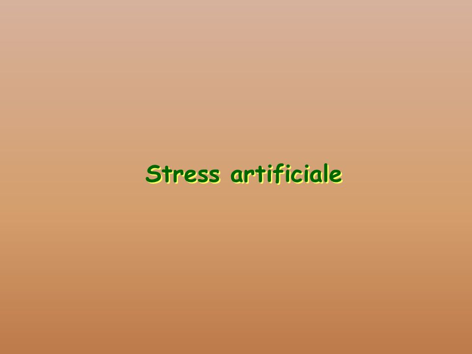 Stress artificiale