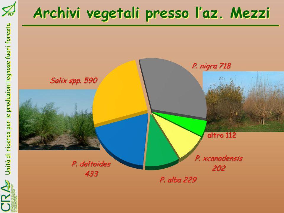 Unità di ricerca per le produzioni legnose fuori foresta Impianto di pioppi a Lentini Acqua con SAR = 4,5