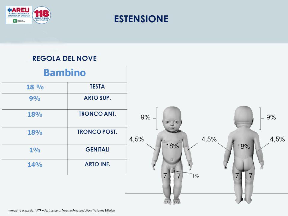 """REGOLA DEL NOVE Adulto TESTA 9% ARTO SUP. 9% TRONCO ANT. 18% TRONCO POST. 18% GENITALI 1% ARTO INF. 18% 1% Immagine tratte da: """"ATP – Assistenza al Tr"""