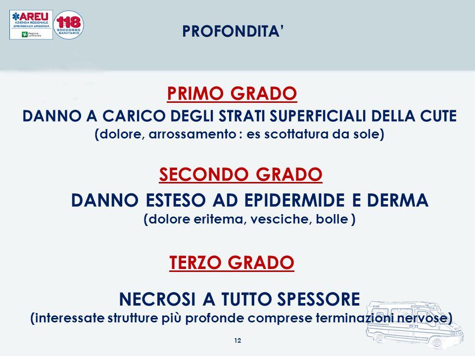REGOLA DEL NOVE Bambino 18 % TESTA 9% ARTO SUP.18% TRONCO ANT.