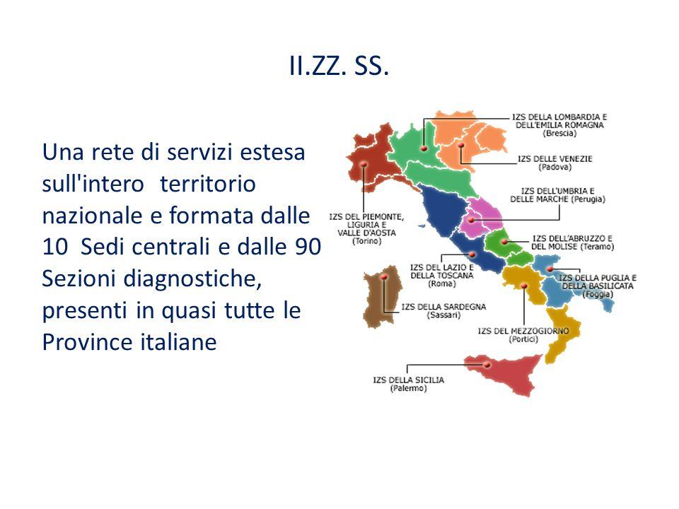 II.ZZ. SS. Una rete di servizi estesa sull'intero territorio nazionale e formata dalle 10 Sedi centrali e dalle 90 Sezioni diagnostiche, presenti in q