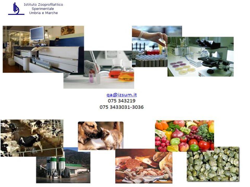 La politica della sicurezza alimentare deve basarsi su un approccio completo e integrato considerando l'intera catena alimentare (filiera) dai campi alla tavola LA POLITICA DELLA SICUREZZA ALIMENTARE Deve consentire la rintracciabilità dei percorsi degli alimenti e dei mangimi nonché dei loro ingredienti