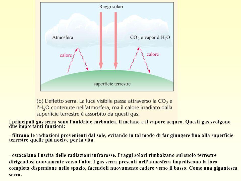 I principali gas serra sono l'anidride carbonica, il metano e il vapore acqueo. Questi gas svolgono due importanti funzioni: - filtrano le radiazioni