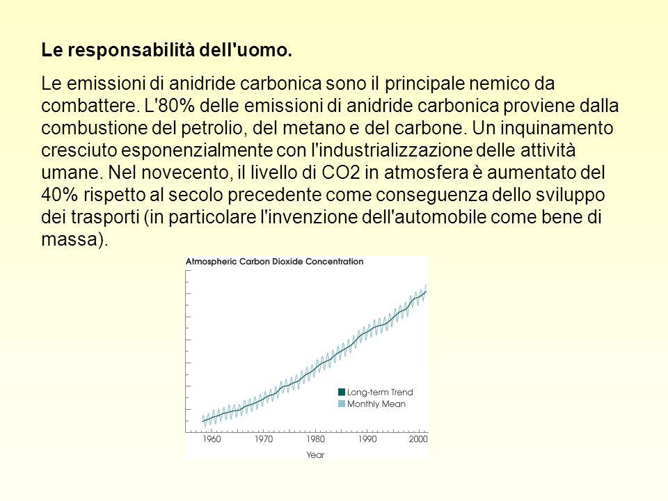 Le responsabilità dell'uomo. Le emissioni di anidride carbonica sono il principale nemico da combattere. L'80% delle emissioni di anidride carbonica p