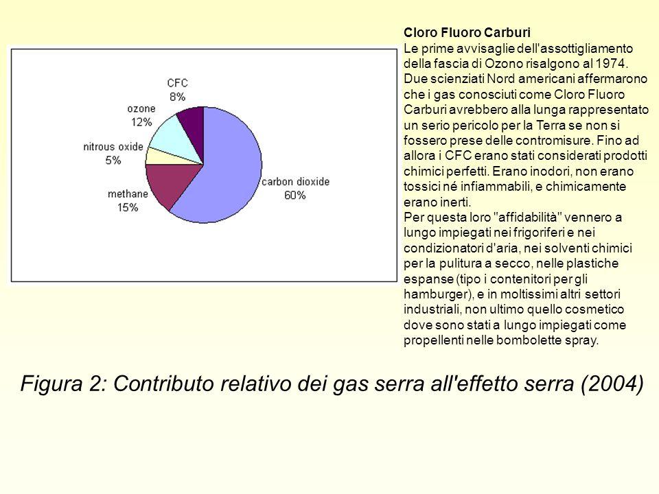 Figura 2: Contributo relativo dei gas serra all'effetto serra (2004) Cloro Fluoro Carburi Le prime avvisaglie dell'assottigliamento della fascia di Oz