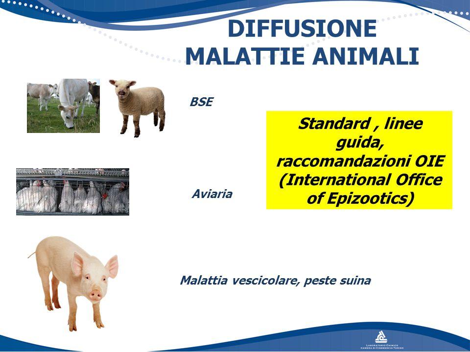 DIFFUSIONE MALATTIE ANIMALI BSE Aviaria Malattia vescicolare, peste suina Standard, linee guida, raccomandazioni OIE (International Office of Epizooti