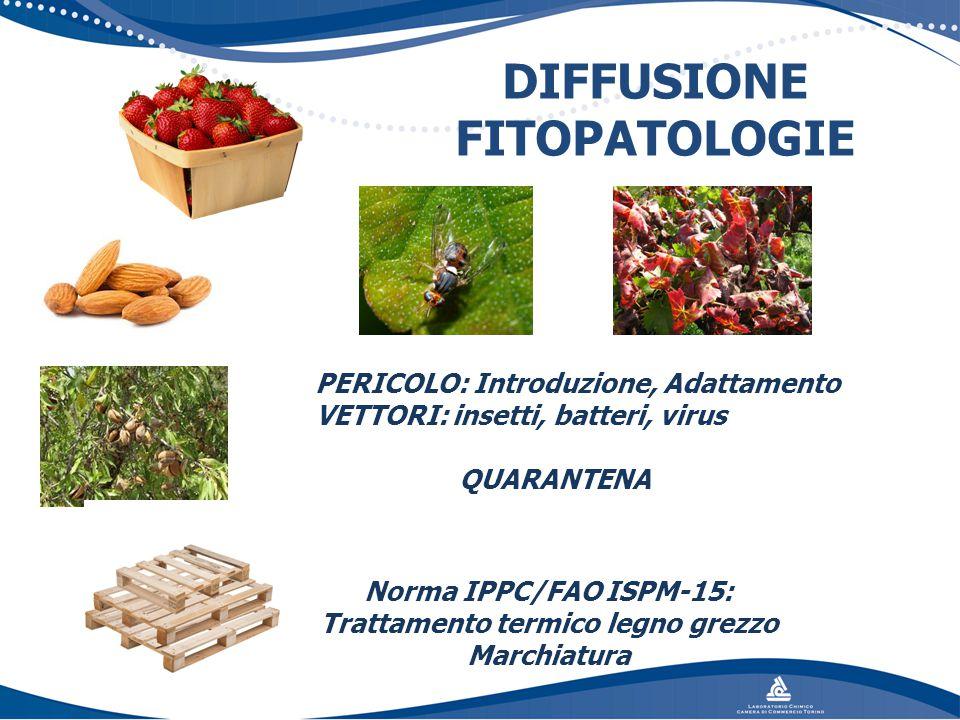 DIFFUSIONE FITOPATOLOGIE Norma IPPC/FAO ISPM-15: Trattamento termico legno grezzo Marchiatura PERICOLO: Introduzione, Adattamento VETTORI: insetti, ba