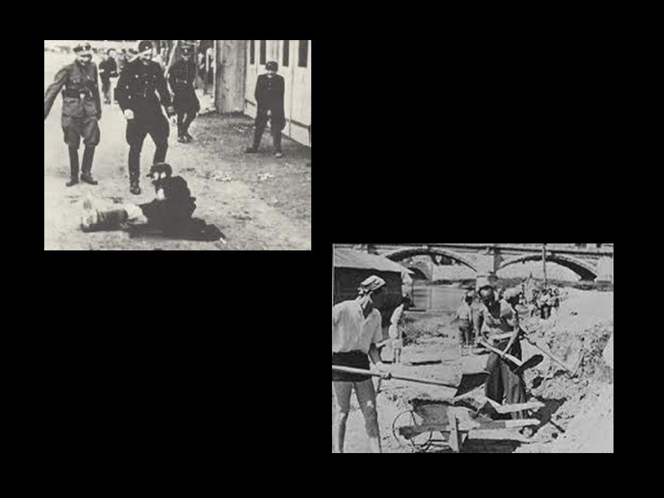 Le torture più atroci -I deportati venivano malmenati, torturati e sottoposti alle più terribili umiliazioni per semplice divertimento delle SS, così da distruggerli sul piano fisico ma soprattutto su quello psicologico; -Costrizione escrementizia e alla nudità; -Obbligo di mangiare come cani, senza cucchiai, nonostante questi non mancassero; -Far restare i deportati per 2 o 3 ore sotto la pioggia a 10-20 gradi sotto zero; -''Vitamine'': erano sottoposti a una serie di esercizi fisici serali o costretti alla marcia sulle ginocchia, sui gomiti o a trasportare per ore pietre pesanti, o ancora a creare ''combattimenti tra gladiatori''.