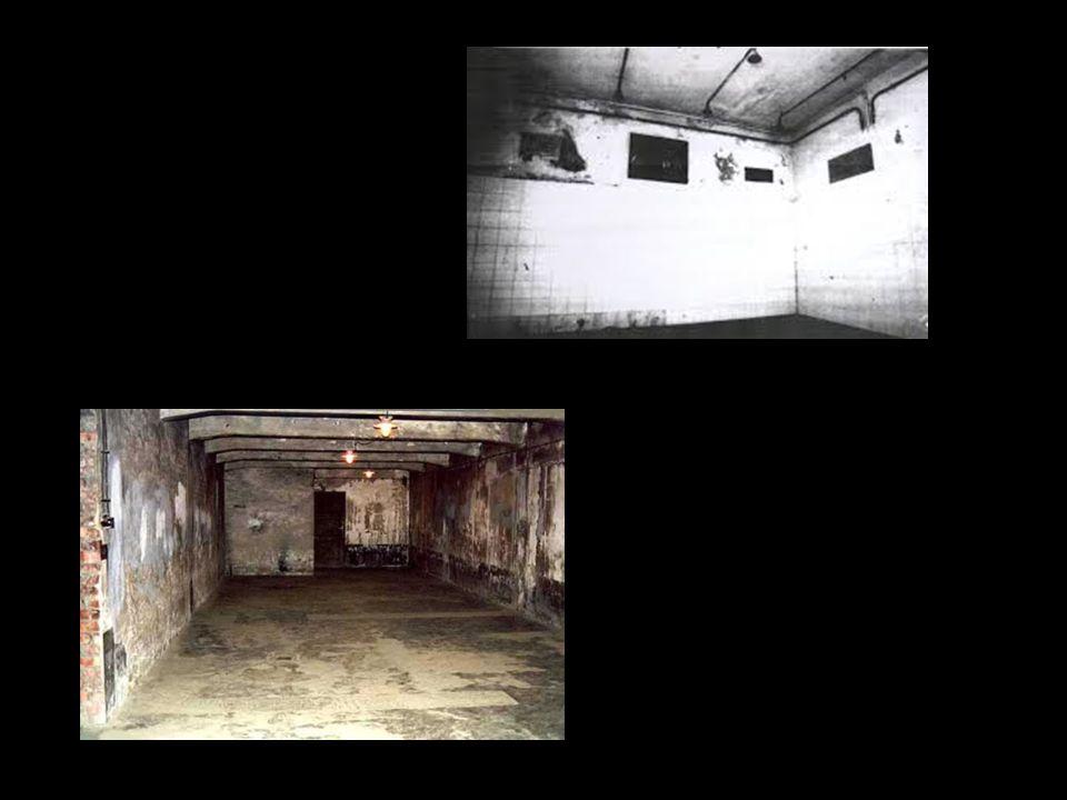Le camere a gas vennero utilizzate dai nazisti durante l'Olocausto. Diversi esperimenti furono condotti per trovare il metodo più rapido ed efficace: