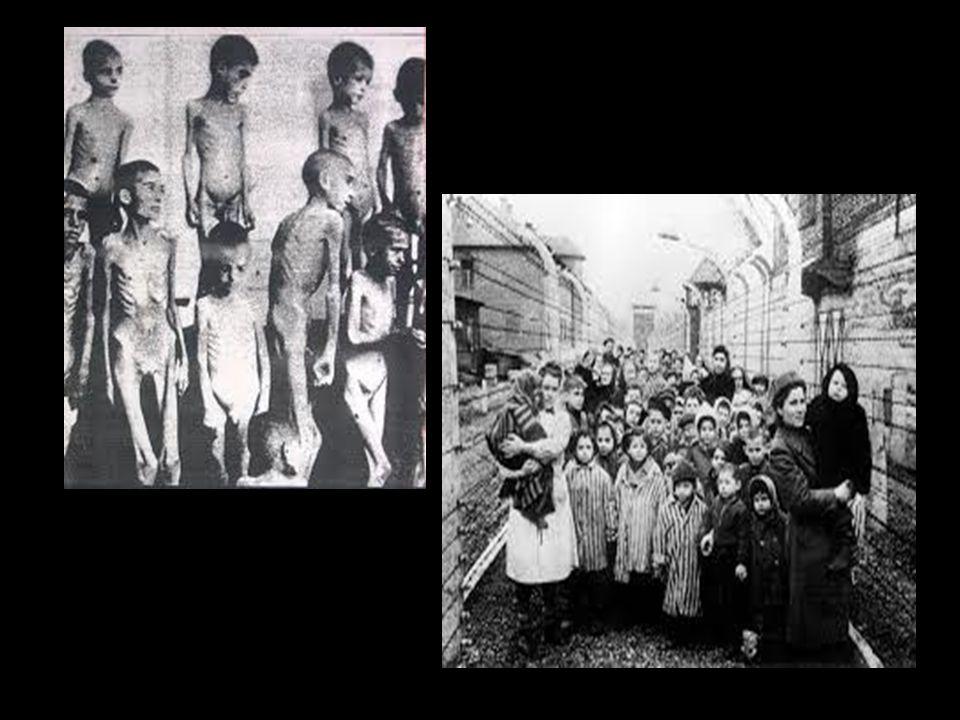 Neanche i bambini furono risparmiati.. in tutto, si calcola che almeno un milione e mezzo di bambini e ragazzi sia stato ucciso dai Nazisti e dai loro