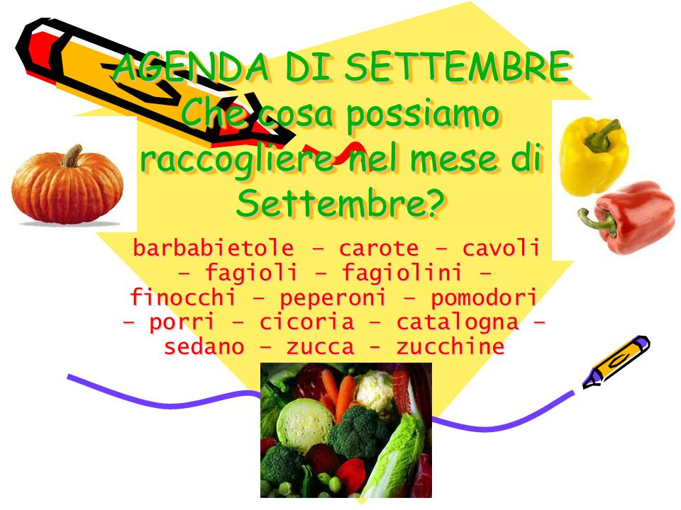 AGENDA DI SETTEMBRE Che cosa possiamo raccogliere nel mese di Settembre? barbabietole – carote – cavoli – fagioli – fagiolini – finocchi – peperoni –