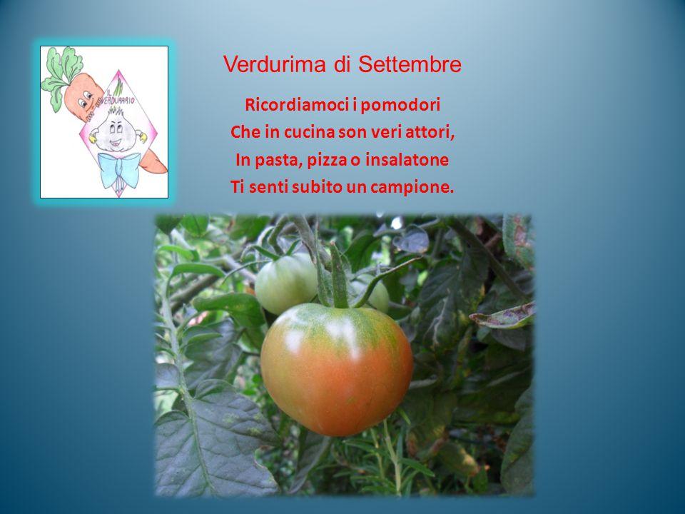 Verdurima di Settembre Ricordiamoci i pomodori Che in cucina son veri attori, In pasta, pizza o insalatone Ti senti subito un campione.