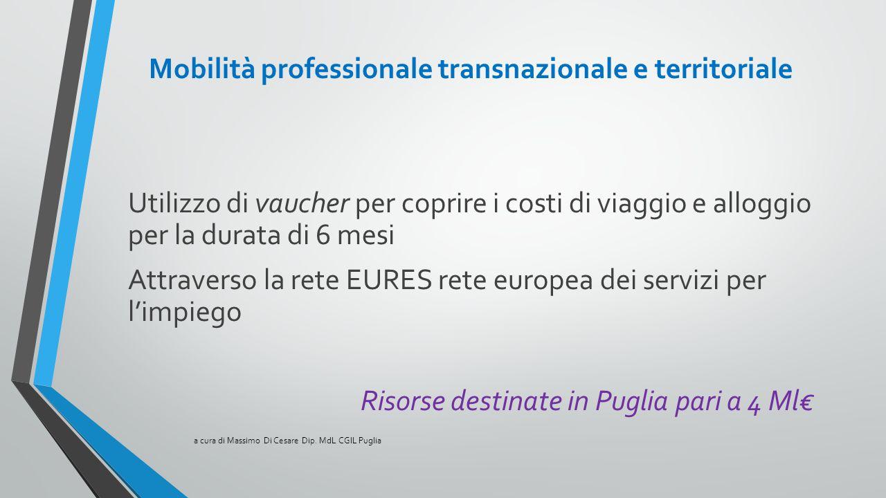 Mobilità professionale transnazionale e territoriale Utilizzo di vaucher per coprire i costi di viaggio e alloggio per la durata di 6 mesi Attraverso