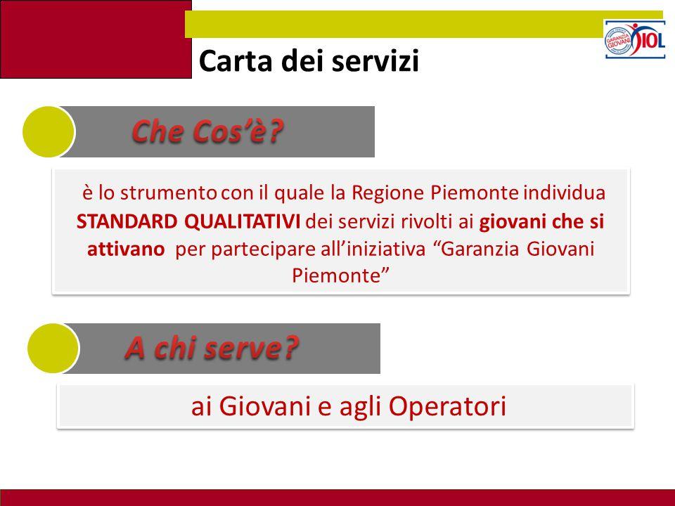 Carta dei servizi è lo strumento con il quale la Regione Piemonte individua STANDARD QUALITATIVI dei servizi rivolti ai giovani che si attivano per pa