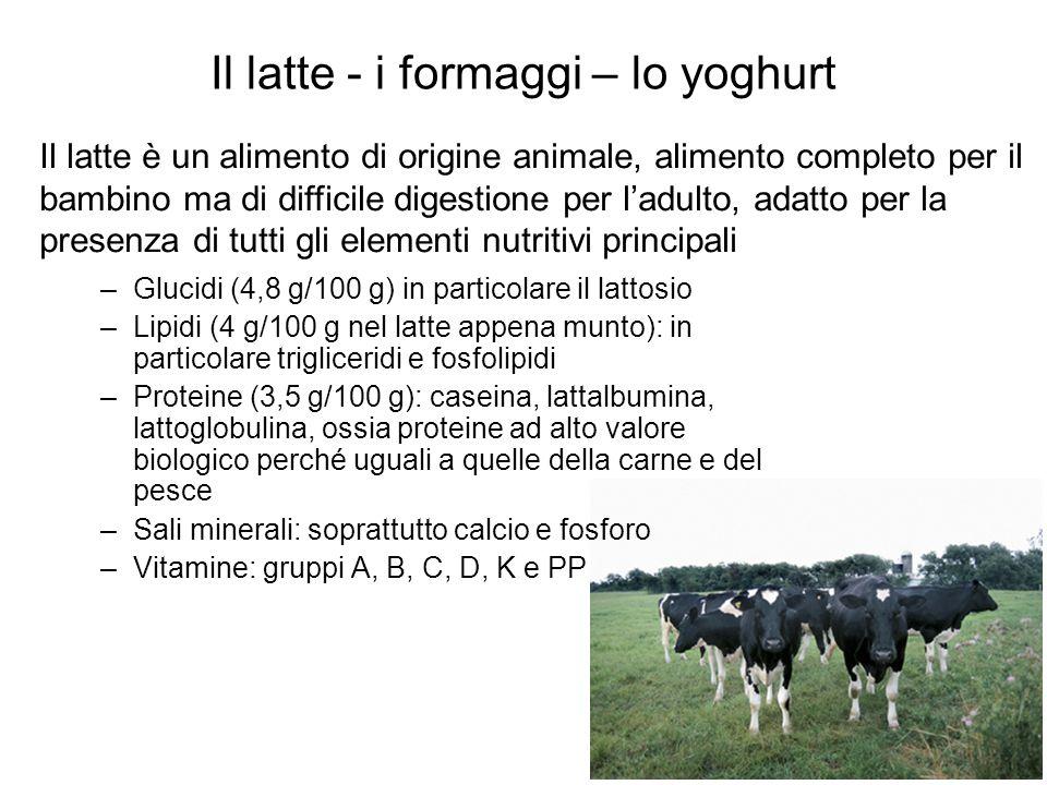 Il latte - i formaggi – lo yoghurt –Glucidi (4,8 g/100 g) in particolare il lattosio –Lipidi (4 g/100 g nel latte appena munto): in particolare trigli