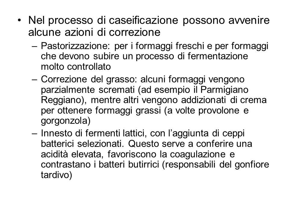 Nel processo di caseificazione possono avvenire alcune azioni di correzione –Pastorizzazione: per i formaggi freschi e per formaggi che devono subire