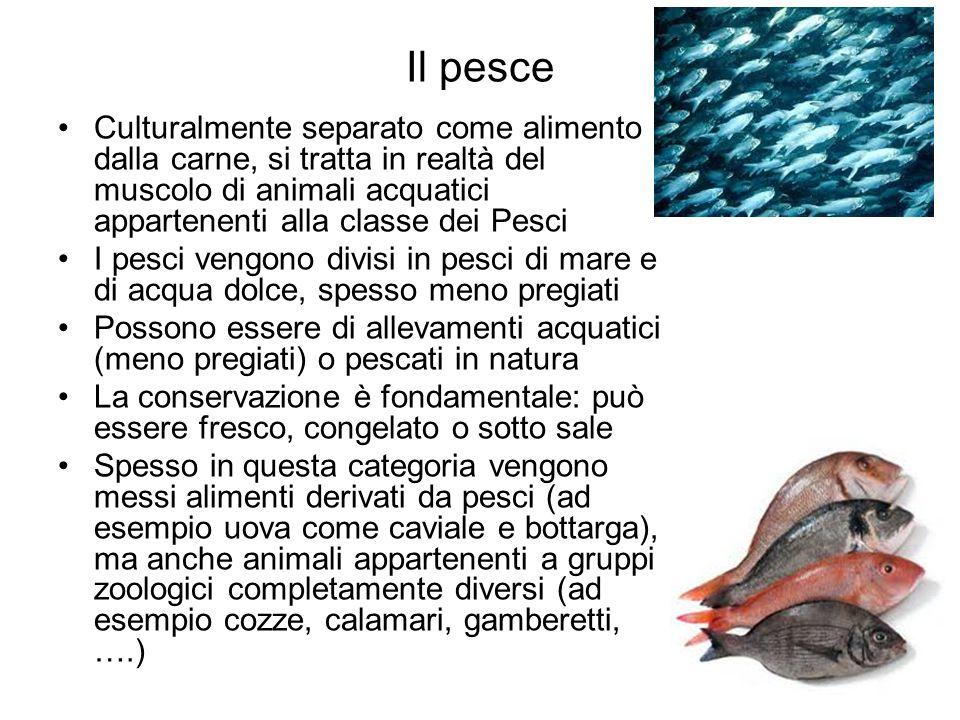 Il pesce Culturalmente separato come alimento dalla carne, si tratta in realtà del muscolo di animali acquatici appartenenti alla classe dei Pesci I p