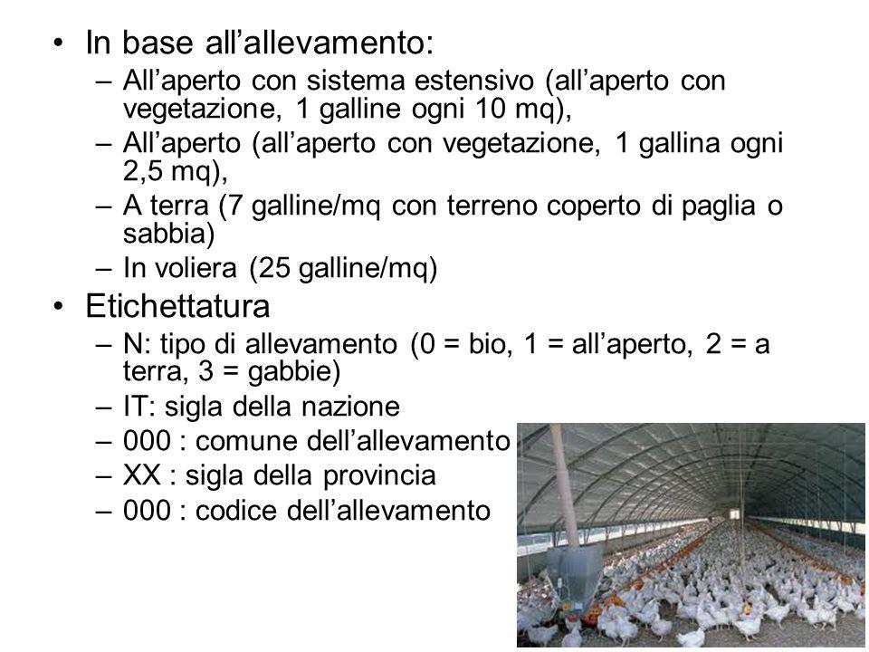 In base all'allevamento: –All'aperto con sistema estensivo (all'aperto con vegetazione, 1 galline ogni 10 mq), –All'aperto (all'aperto con vegetazione