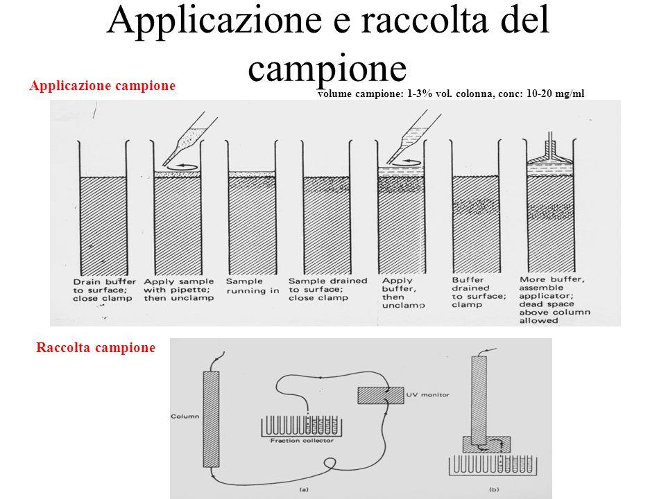 Applicazione e raccolta del campione volume campione: 1-3% vol. colonna, conc: 10-20 mg/ml Applicazione campione Raccolta campione