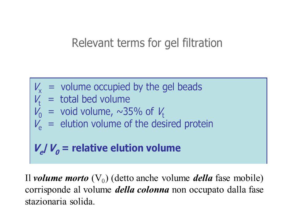 Il volume morto (V 0 ) (detto anche volume della fase mobile) corrisponde al volume della colonna non occupato dalla fase stazionaria solida.