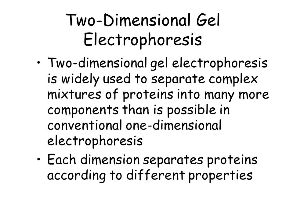 Two-Dimensional Gel Electrophoresis Two-dimensional gel electrophoresis is widely used to separate complex mixtures of proteins into many more components than is possible in conventional one-dimensional electrophoresis Each dimension separates proteins according to different properties