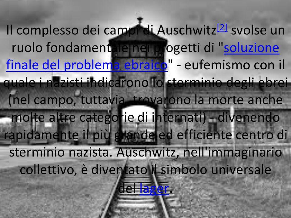Il complesso dei campi di Auschwitz [2] svolse un ruolo fondamentale nei progetti di