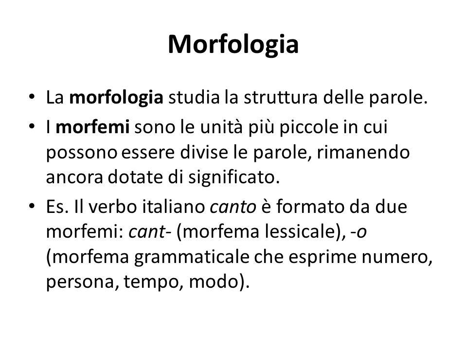Morfologia La morfologia studia la struttura delle parole. I morfemi sono le unità più piccole in cui possono essere divise le parole, rimanendo ancor
