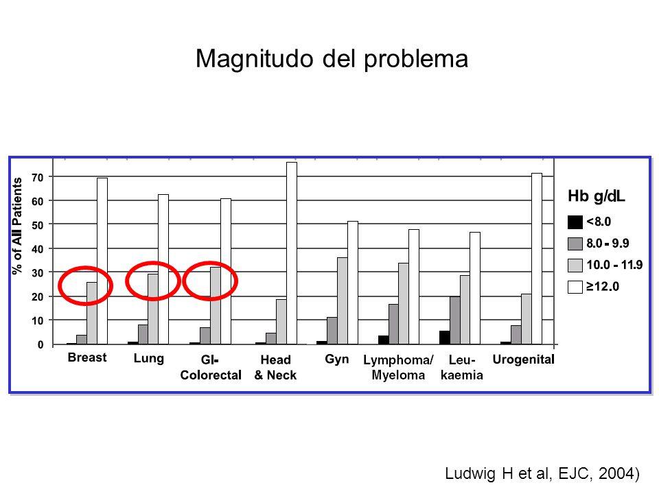 Oltre il 60% dei pazienti non riceve trattamento Ferro trasfusioni eritropoietina Nessun trattamento Ludwig EJC - 40 (2004) 2293–2306