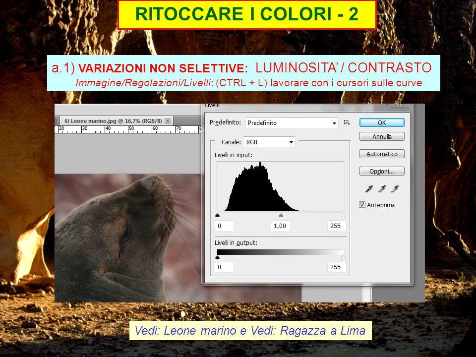 RITOCCARE I COLORI - 2 a.1) VARIAZIONI NON SELETTIVE: LUMINOSITA' / CONTRASTO Immagine/Regolazioni/Livelli: (CTRL + L) lavorare con i cursori sulle curve Vedi: Leone marino e Vedi: Ragazza a Lima