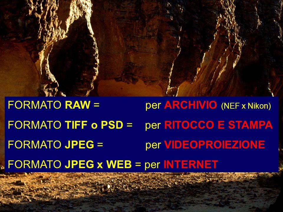 FORMATO RAW = per ARCHIVIO (NEF x Nikon) FORMATO TIFF o PSD = per RITOCCO E STAMPA FORMATO JPEG = per VIDEOPROIEZIONE FORMATO JPEG x WEB = per INTERNET