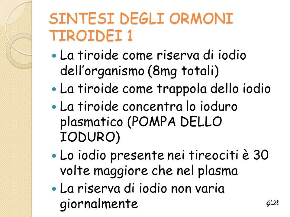 SINTESI DEGLI ORMONI TIROIDEI 1 La tiroide come riserva di iodio dell'organismo (8mg totali) La tiroide come trappola dello iodio La tiroide concentra lo ioduro plasmatico (POMPA DELLO IODURO) Lo iodio presente nei tireociti è 30 volte maggiore che nel plasma La riserva di iodio non varia giornalmente G.D.