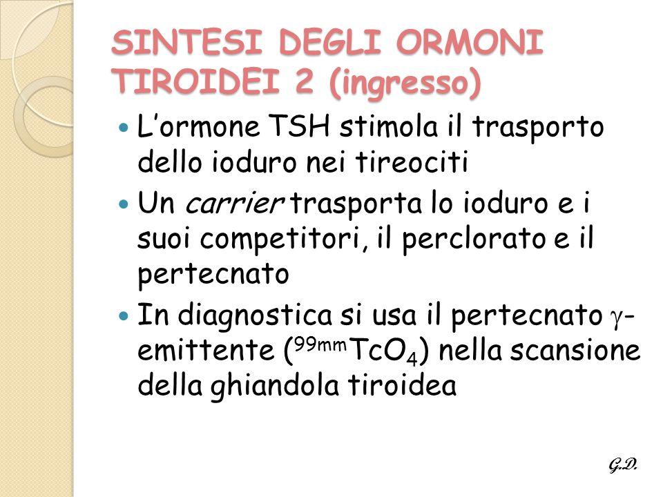 SINTESI DEGLI ORMONI TIROIDEI 2 (ingresso) L'ormone TSH stimola il trasporto dello ioduro nei tireociti Un carrier trasporta lo ioduro e i suoi competitori, il perclorato e il pertecnato In diagnostica si usa il pertecnato  - emittente ( 99mm TcO 4 ) nella scansione della ghiandola tiroidea G.D.
