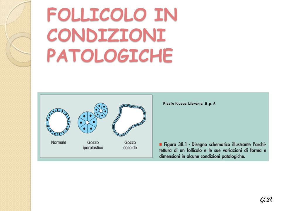 FOLLICOLO IN CONDIZIONI PATOLOGICHE Piccin Nuova Libraria S.p.A G.D.