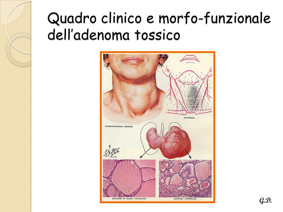 Quadro clinico e morfo-funzionale dell'adenoma tossico G.D.