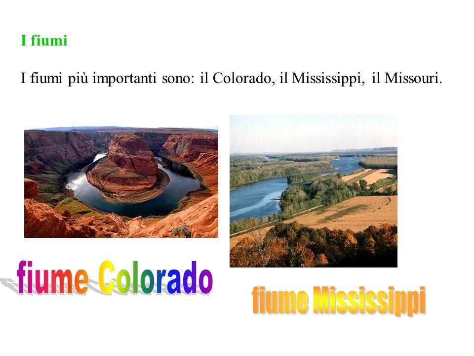 I fiumi I fiumi più importanti sono: il Colorado, il Mississippi, il Missouri.
