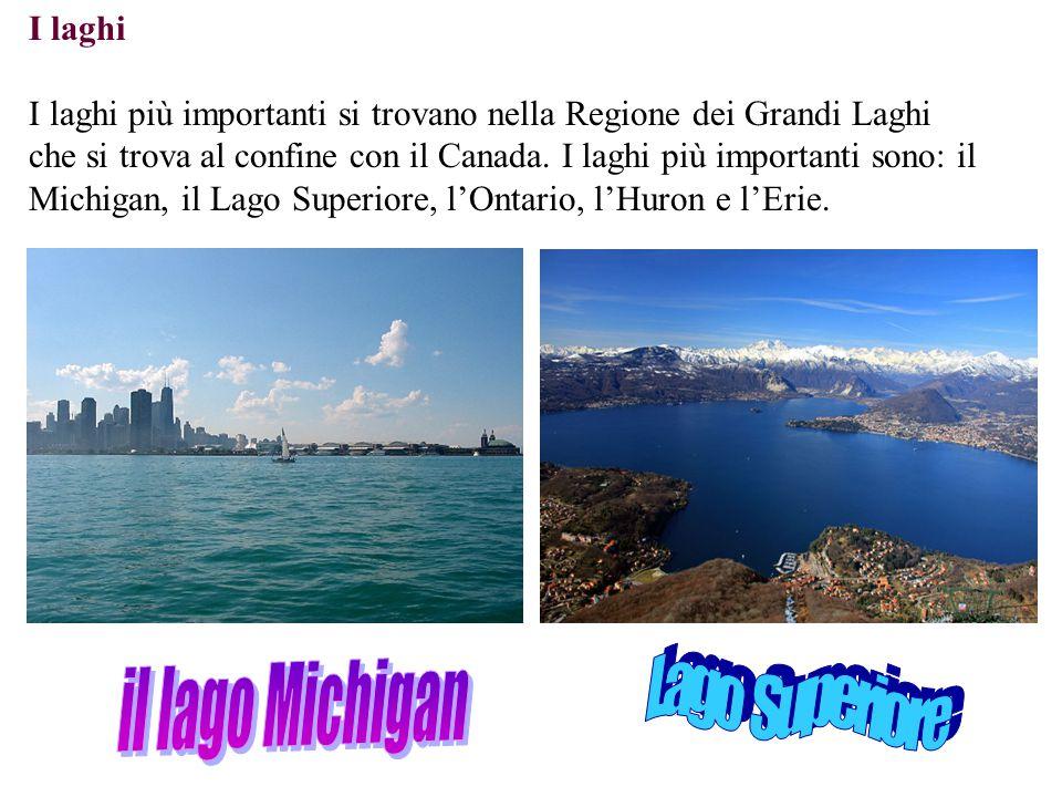 I laghi I laghi più importanti si trovano nella Regione dei Grandi Laghi che si trova al confine con il Canada. I laghi più importanti sono: il Michig