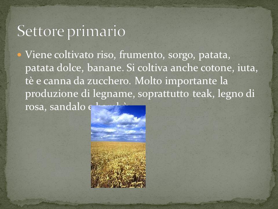 Viene coltivato riso, frumento, sorgo, patata, patata dolce, banane. Si coltiva anche cotone, iuta, tè e canna da zucchero. Molto importante la produz