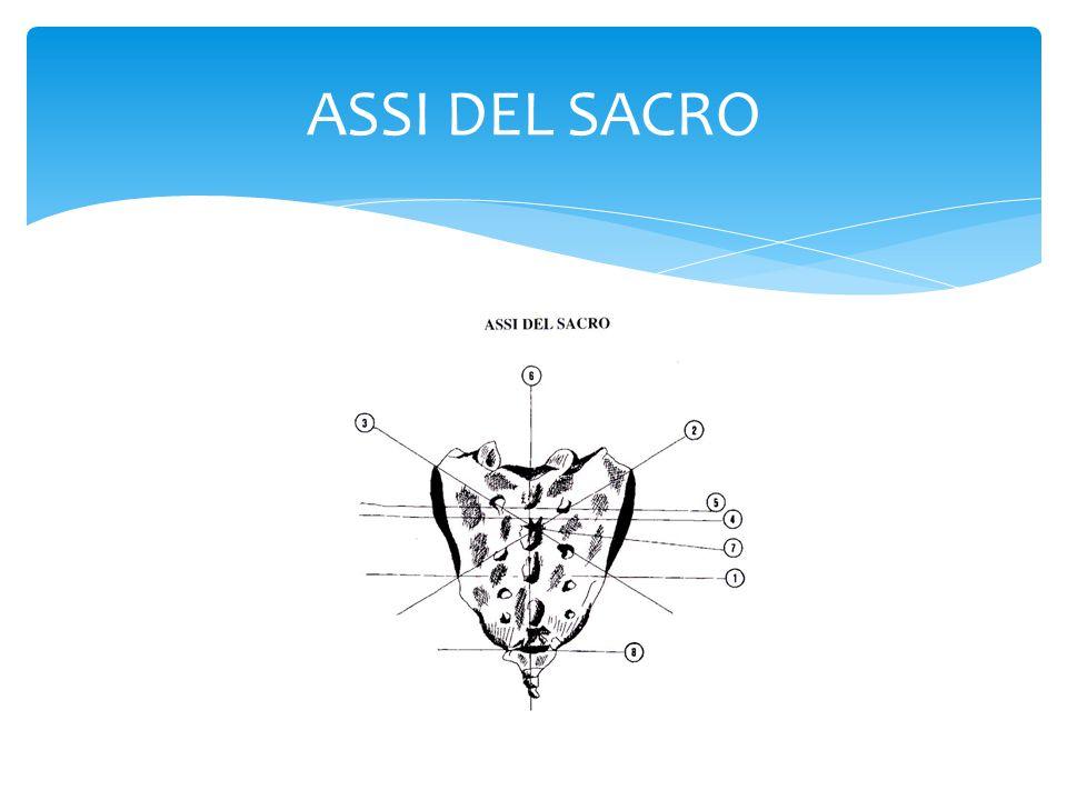 Si dovranno invertire i parametri corettivi rispetto al sacro traumatico dx Sacro traumatico sx (asse verticale sx, l'AIL sx è inferiore