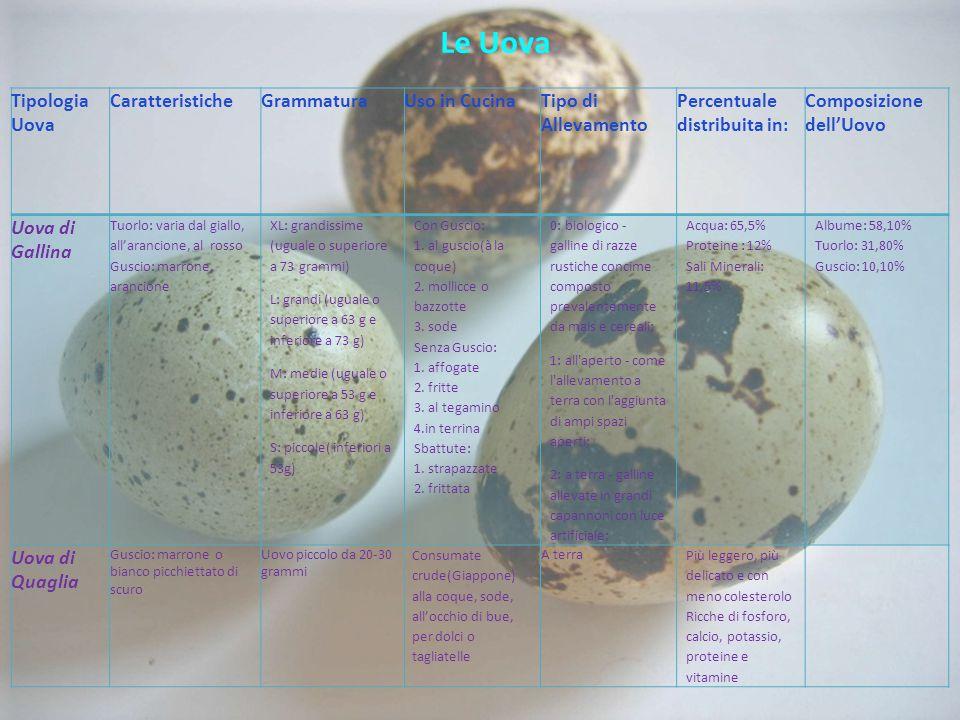 Le Uova Tipologia Uova CaratteristicheGrammaturaUso in CucinaTipo di Allevamento Percentuale distribuita in: Composizione dell'Uovo Uova di Gallina Tuorlo: varia dal giallo, all'arancione, al rosso Guscio: marrone, arancione XL: grandissime (uguale o superiore a 73 grammi) L: grandi (uguale o superiore a 63 g e inferiore a 73 g) M: medie (uguale o superiore a 53 g e inferiore a 63 g) S: piccole( inferiori a 53g) Con Guscio: 1.