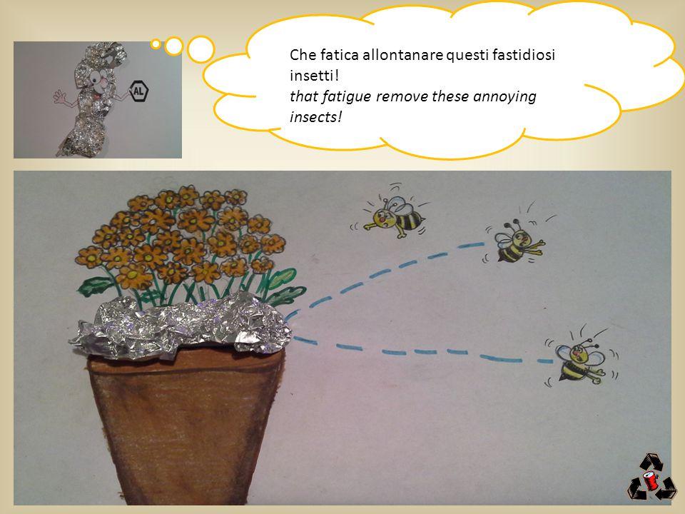 Che fatica allontanare questi fastidiosi insetti! that fatigue remove these annoying insects!