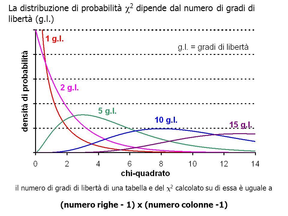 La distribuzione di probabilità  2 dipende dal numero di gradi di libertà (g.l.) il numero di gradi di libertà di una tabella e del  2 calcolato su di essa è uguale a (numero righe - 1) x (numero colonne -1)
